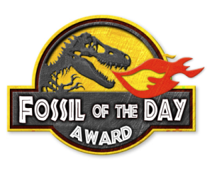 Fossil of the Day- award